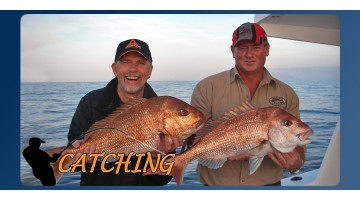 So You Want To Catch... Snapper