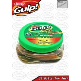 "Gulp Alive Minnow Assortment 4"" Softbait"