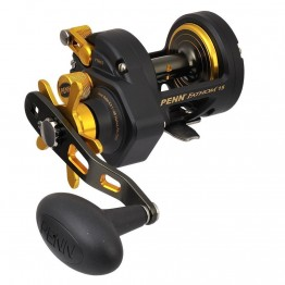 Penn Fathom 15 Star Drag Reel